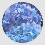 Hydrangea azul etiqueta redonda