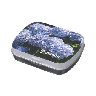 Hydrangea azul frascos de caramelos