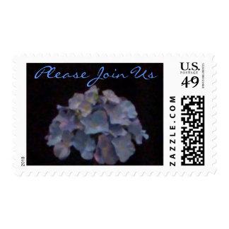Hydrangea azul - invitación sellos postales