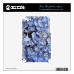 Hydrangea azul iPod touch 4G skins