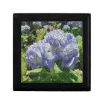 Hydrangea azul púrpura cajas de regalo
