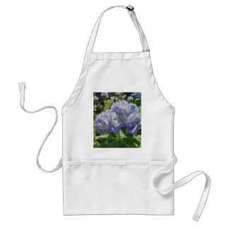 Hydrangea azul púrpura delantal
