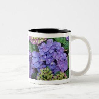 Hydrangea azul taza dos tonos