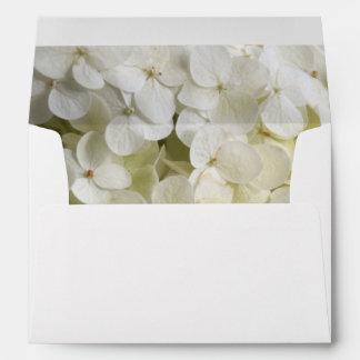 Hydrangea blanco floral sobre