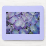 Hydrangea Blooms Mouse Pad
