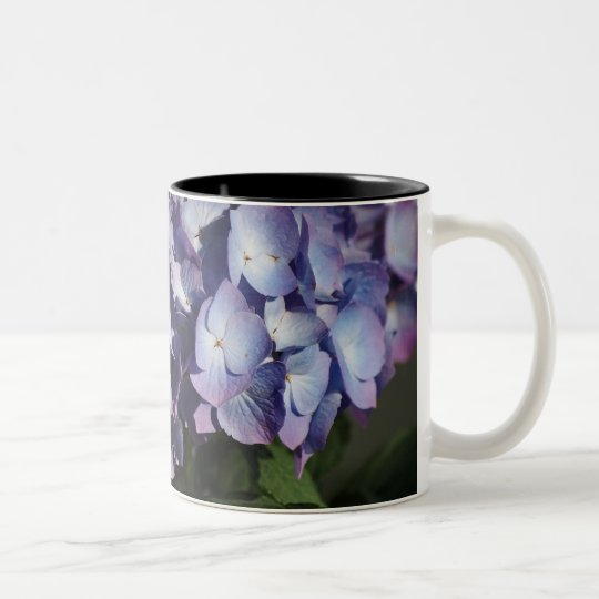 Hydrangea Blooms Two-Tone Coffee Mug