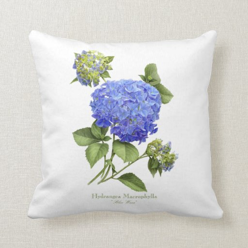 Blue Hydrangea Throw Pillow : Hydrangea