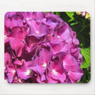 Hydrangea Close Up Image Mouse Pad