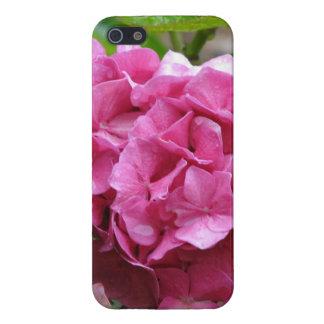 Hydrangea de las rosas fuertes iPhone 5 cárcasa