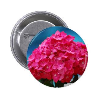 Hydrangea de las rosas fuertes pin