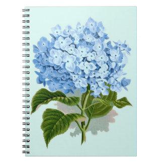Hydrangea del azul del vintage libretas