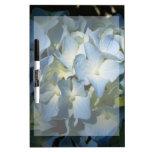 Hydrangea en foto floral azul de las flores de las pizarra blanca