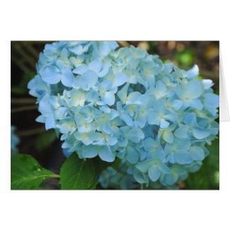 Hydrangea Flower Card