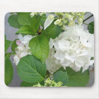 Hydrangea Flower Green White Nature Garden Plants Mouse Pad