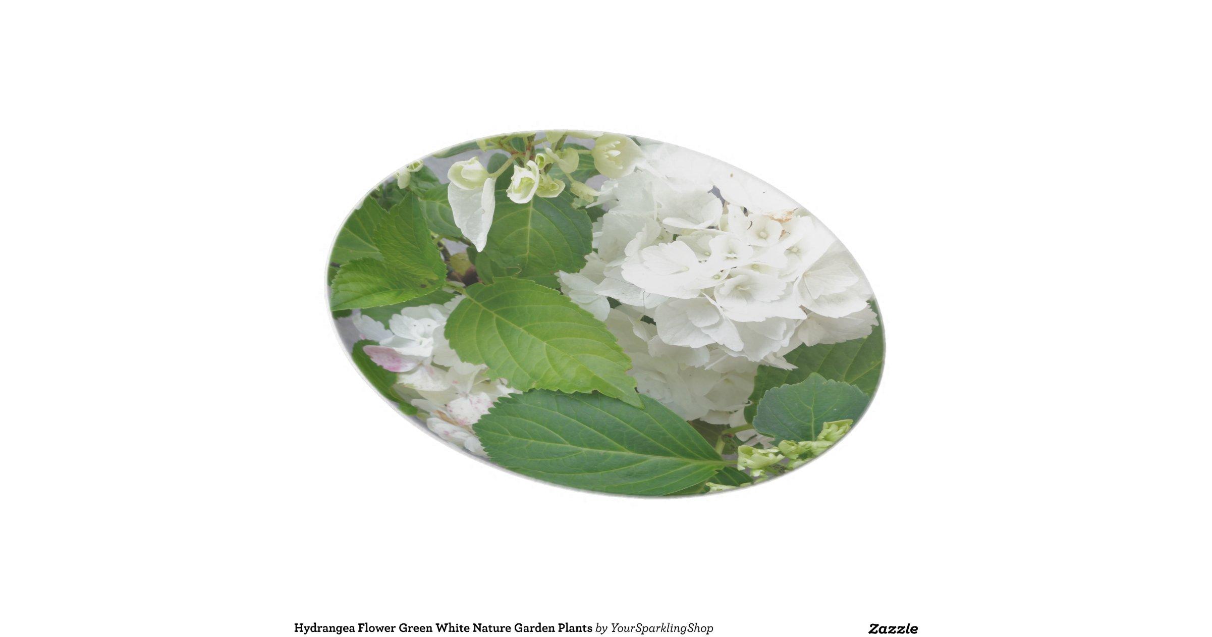 Pikmin 2 White Flower Garden White Flower Garden All