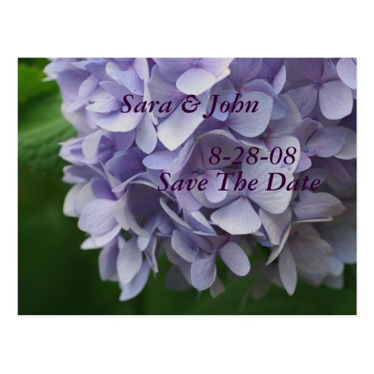 Hydrangea Flower Save The Date Wedding Postcard