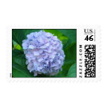 Hydrangea Flower stamps Invitations Cards Floral