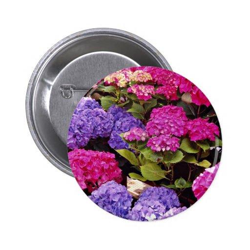 Hydrangea flowers 2 inch round button