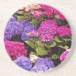 Hydrangea flowers coasters