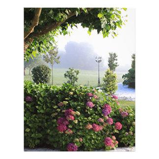 Hydrangea garden in the mist, Arzua, Spain 2 Letterhead