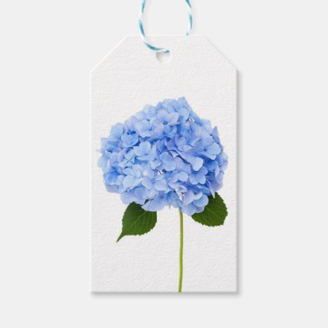 Hydrangea Gift Tags