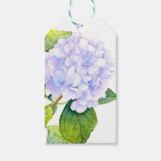 Hydrangea Gift Tags