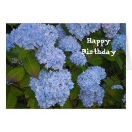 Hydrangea Happy Birthday Card