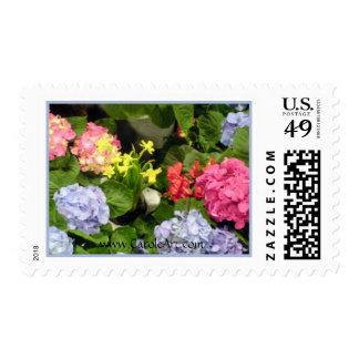 """""""Hydrangea Hues"""" Stamps"""