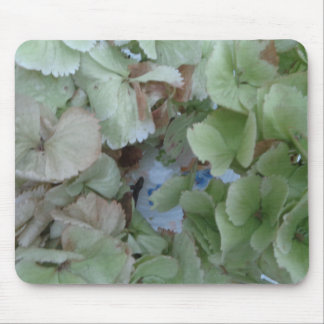 Hydrangea leaves mouse pad