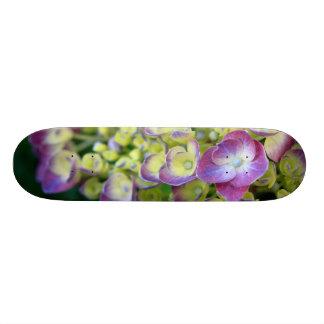 Hydrangea macro skate board deck