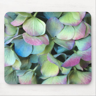 HYDRANGEA  Multi-color petals --- Mouse Pad