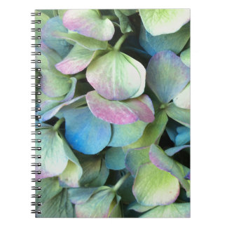 HYDRANGEA  Multi-color petals --- Spiral Notebook