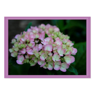 Hydrangea Nigra Gift Tag Large Business Cards (Pack Of 100)