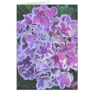 Hydrangea Note / Greeting Card