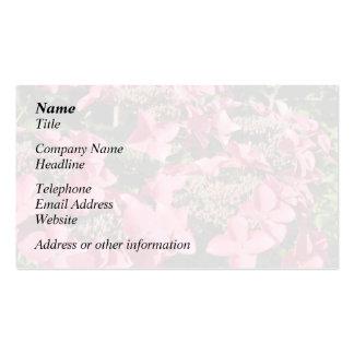 Hydrangea. Pink Flowers. Business Card