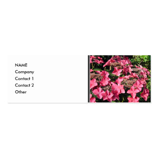 Hydrangea. Pink Flowers. Business Cards