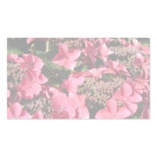 Hydrangea. Pink flowers. Soft Pastel Colors. Business Card Template