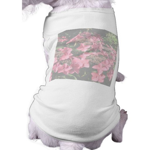 Hydrangea. Pink flowers. Soft Pastel Colors. Dog Clothing