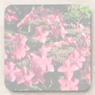 Hydrangea. Pink flowers. Soft Pastel Colors. Drink Coaster