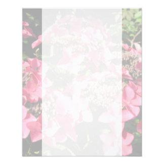 Hydrangea. Pink flowers. Soft Pastel Colors. Flyer