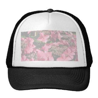 Hydrangea. Pink flowers. Soft Pastel Colors. Mesh Hats