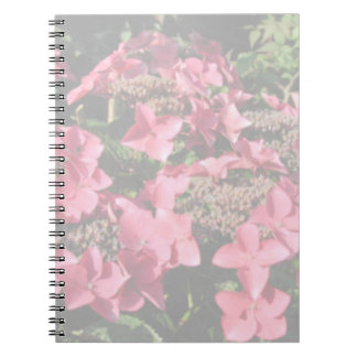 Hydrangea. Pink flowers. Soft Pastel Colors. Note Book