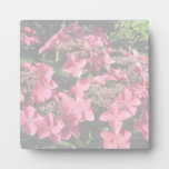 Hydrangea. Pink flowers. Soft Pastel Colors. Display Plaque