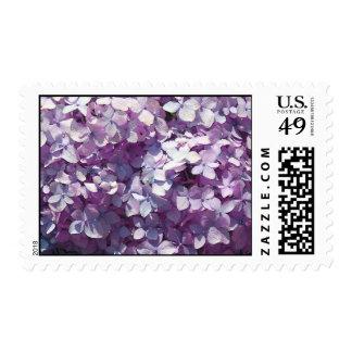 Hydrangea Postage