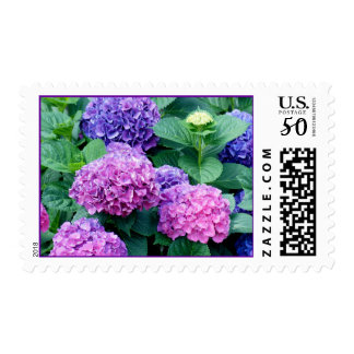 Hydrangea Postage stamp 2481- personalize