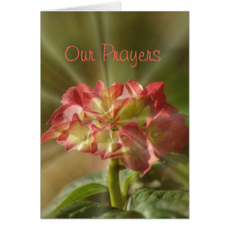 Hydrangea Prayer card or any occasion