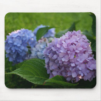 Hydrangea purple and blue colorful floral mousepad