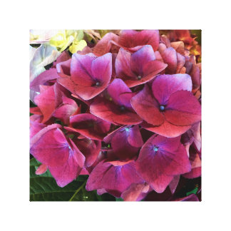 Hydrangea púrpura en lona impresiones en lona