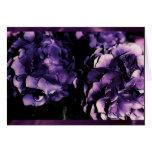 Hydrangea púrpura floral, plantillas de la tarjeta
