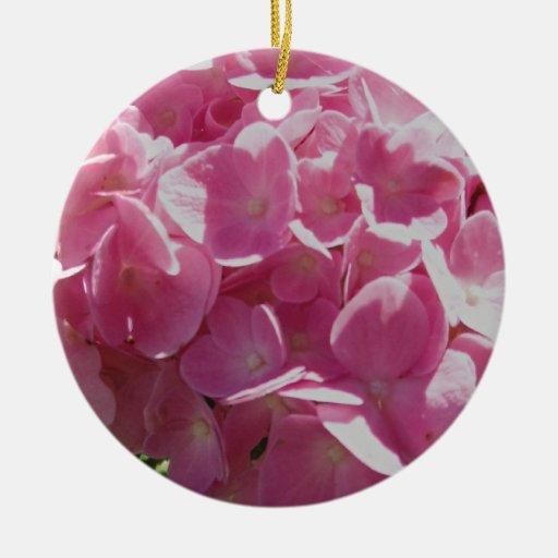 Hydrangea rosado adorno de reyes